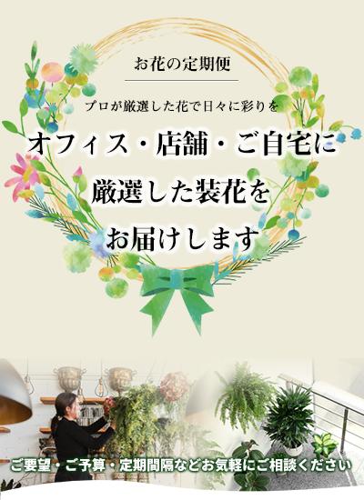 お花の定期便 オフィス・店舗・ご自宅にお花を届けます