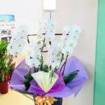 開店祝いのスタンド花などのご注文